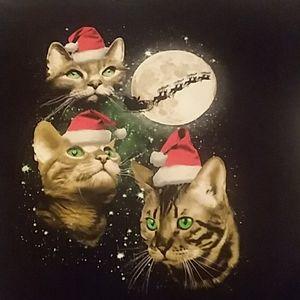 Christmas Santa Clause Cats Santa Sleigh Past Mon